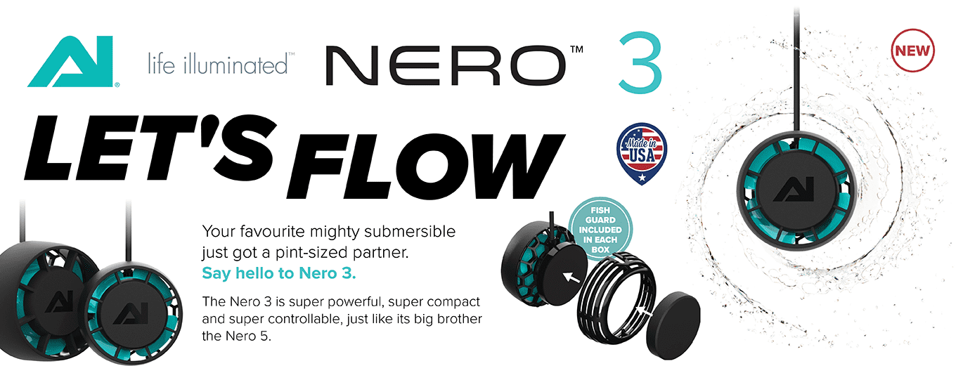 Nero 3 Let's Flow